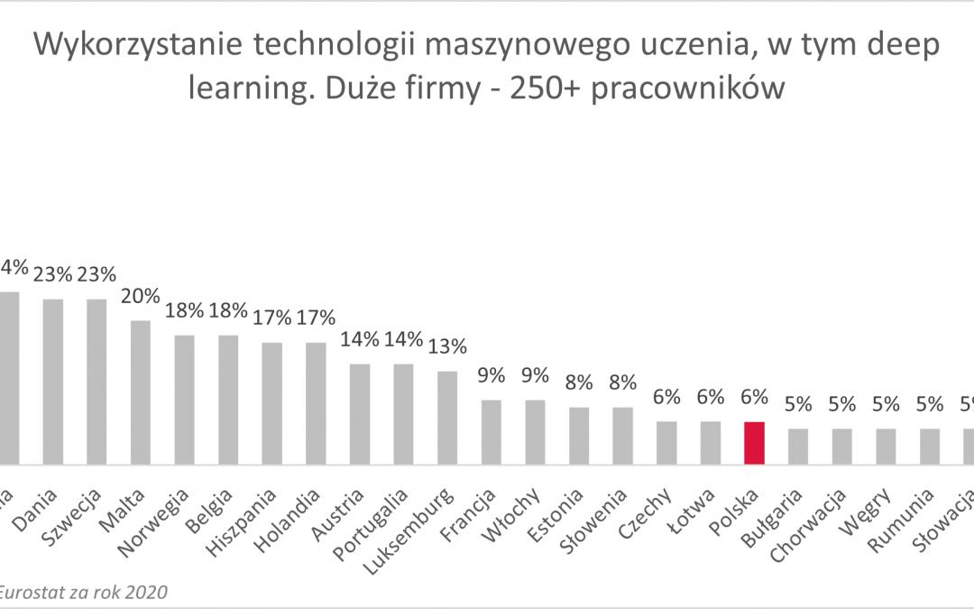Jak Polska wypada na tle Europy w wykorzystaniu AI? Ocena najnowszych danych Eurostatu
